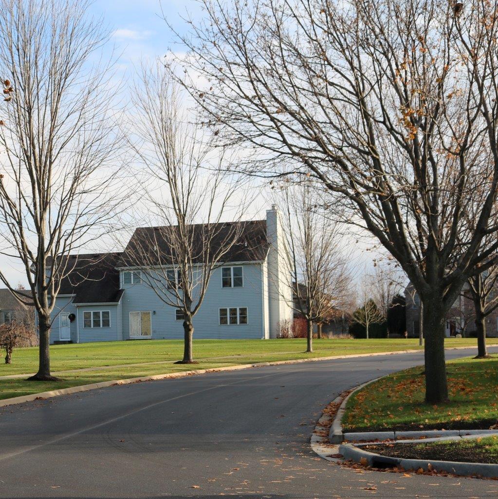 Parkway Tree Trimming Schedule